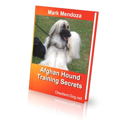 Afghan training secrets how to train a afghan finally i present an ebook dedicated specifically to lovers of afghans fandeluxe Image collections