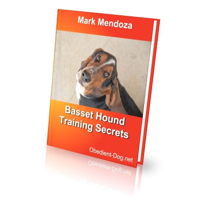 Basset hound training secrets how to train a basset hound finally i present an ebook dedicated specifically to lovers of basset hounds fandeluxe