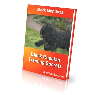 Black Russian Terrier Training Secrets How To Train A Black