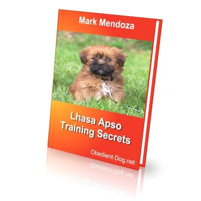Lhasa Apso Training Secrets How To Train A