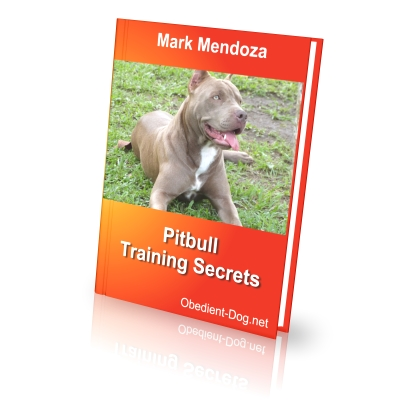 Dog Whisperer Ebook